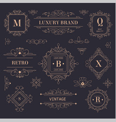 luxury brand vintage labels and logotypes with vector image