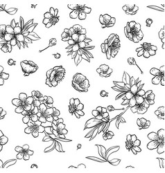 sakura seamless pattern of flowers vector image