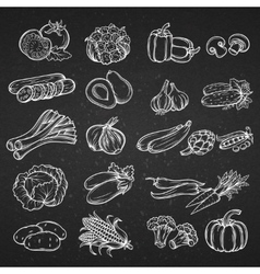 set of different hand drawn decorative vector image