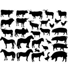 livestock vector image