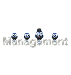Management vector image vector image