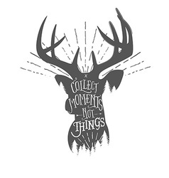 Vintage with wilderness quote on deer vector image vector image