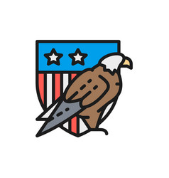 eagle with usa shield coat arms america vector image
