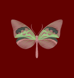 Flat shading style icon butterfly vector