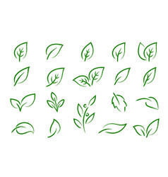 Green leaves branches icons eco set silhouettes vector