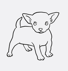 puppy standing sketch vector image