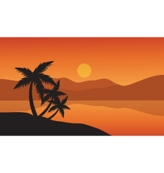 Tree palm trees silhouette on sunset tropical vector