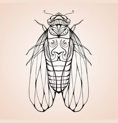 cicada with boho pattern element for color vector image