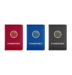 red blue and black passport vector image