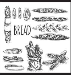 sketch - bakery bread loaf vector image