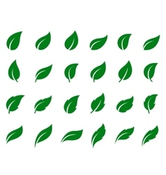 set of leaf icons vector image vector image