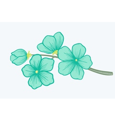 Beautiful blooming branch a symbol of spring vector image vector image
