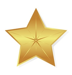 Gold star isolated object vector image