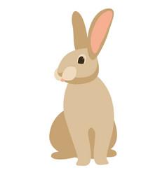 cartoon rabbit front vector image