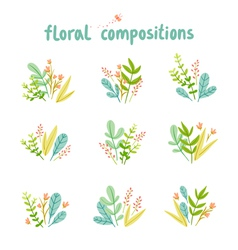 Flowers and leaves compositions collection vector image