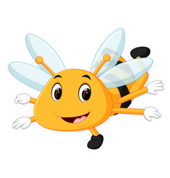 honey bee on a white background vector image