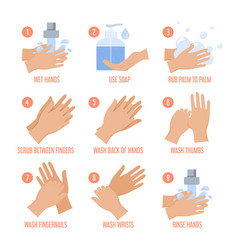 How to wash hands instruction isolated vector