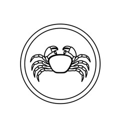 Monochrome line contour with crab in circular vector
