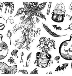 Mythical mandrake plant seamless pattern vector