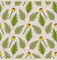 seamless pattern with poppy leaves and seed boxes vector image