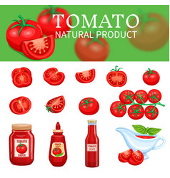 Set of tomatoes and sauces vector