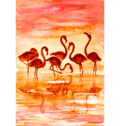 flamingo in sunset vector image