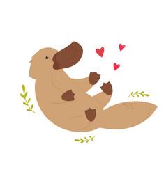A cute australian platypus animal character design vector