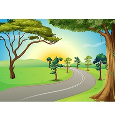 A long winding road at the forest vector
