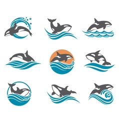 Abstract whale icons set vector