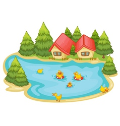 duckling in a pond vector image