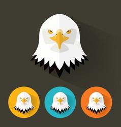 bald eagle portrait with flat design vector image vector image