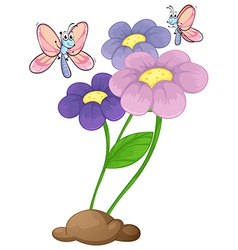 Blooming flowers with two butterflies vector image vector image