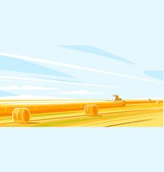 Combines harvesting fields grain vector