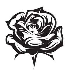 monochrome pattern for design with rose vector image