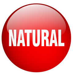 Natural red round gel isolated push button vector