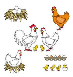 Set of rooster hen baby chicken nest and eggs vector