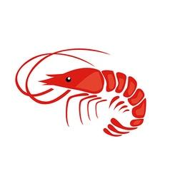 Shrimp vector image