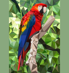 Ara parrot low poly vector