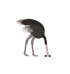 cartoon ostrich bird feeling fear flat design vector image