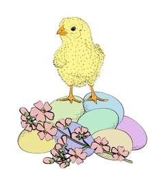 chicken and flowers vector image