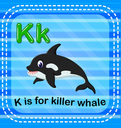 flashcard letter k is for killerwhale vector image