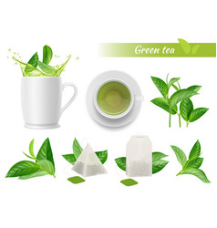 hot tea realistic green leaves cups water vector image