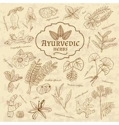 Retro of Ayurvedic herbs Set of web vector