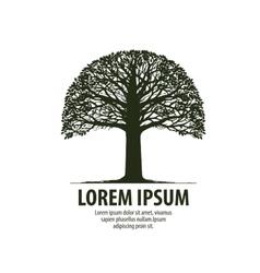 Tree logo silhouette oak icon nature ecology vector