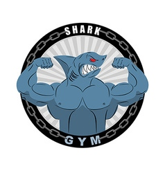 Angry strong shark Shark bodybuilder with big vector image