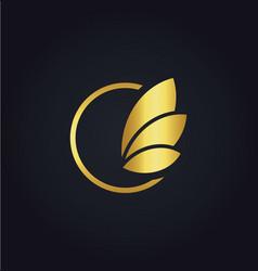 leaf round sign gold logo vector image vector image