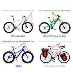 Bicycle types set IV vector image vector image