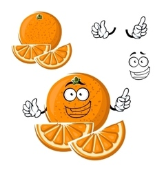 Cartoon happy orange fruit with slices vector image