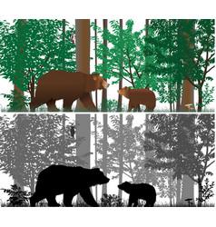Bears vector
