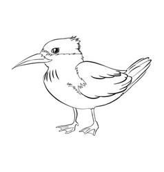 Doodle animal for bird vector
